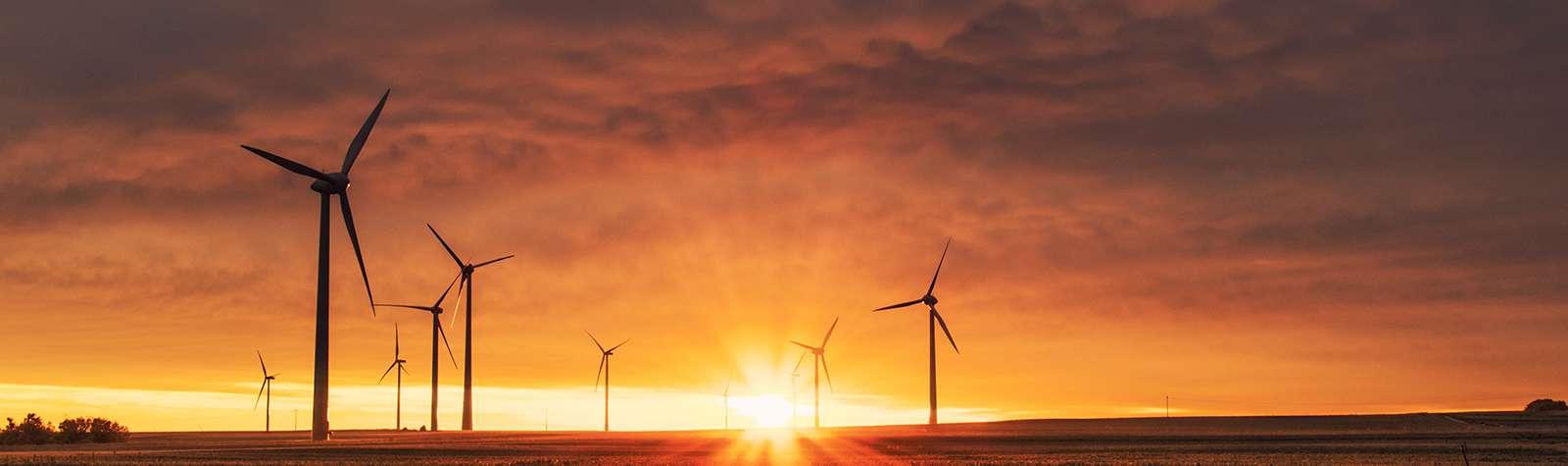 The World Forum on Enterprise & the Environment