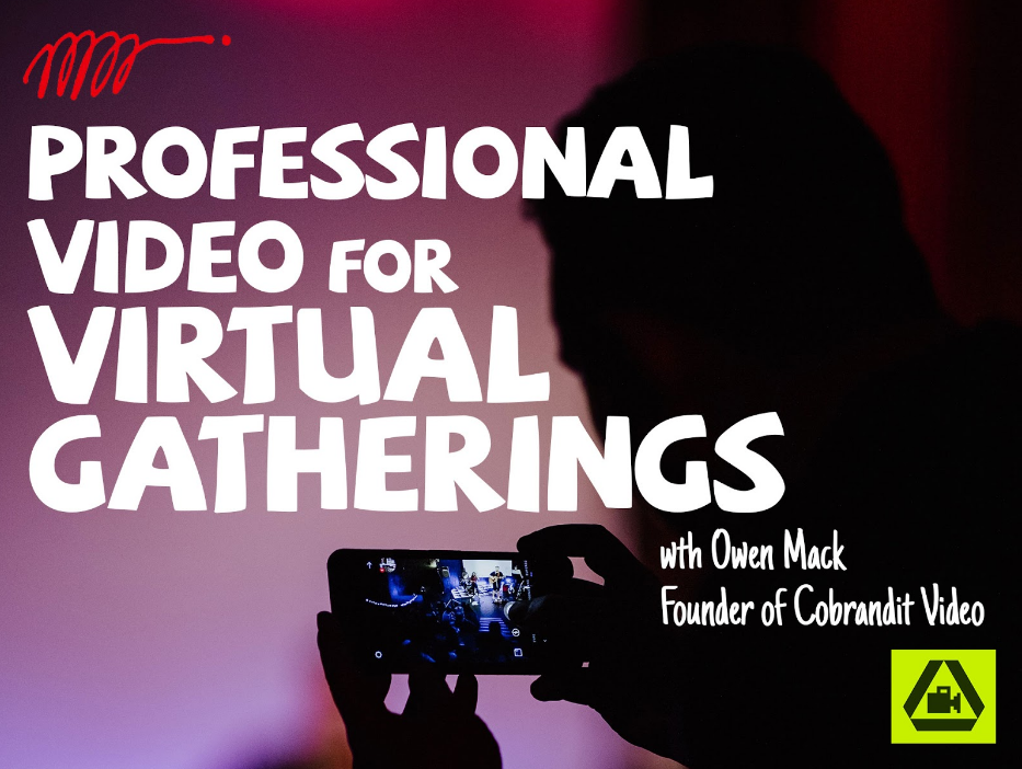 Professional video for virtual gatherings